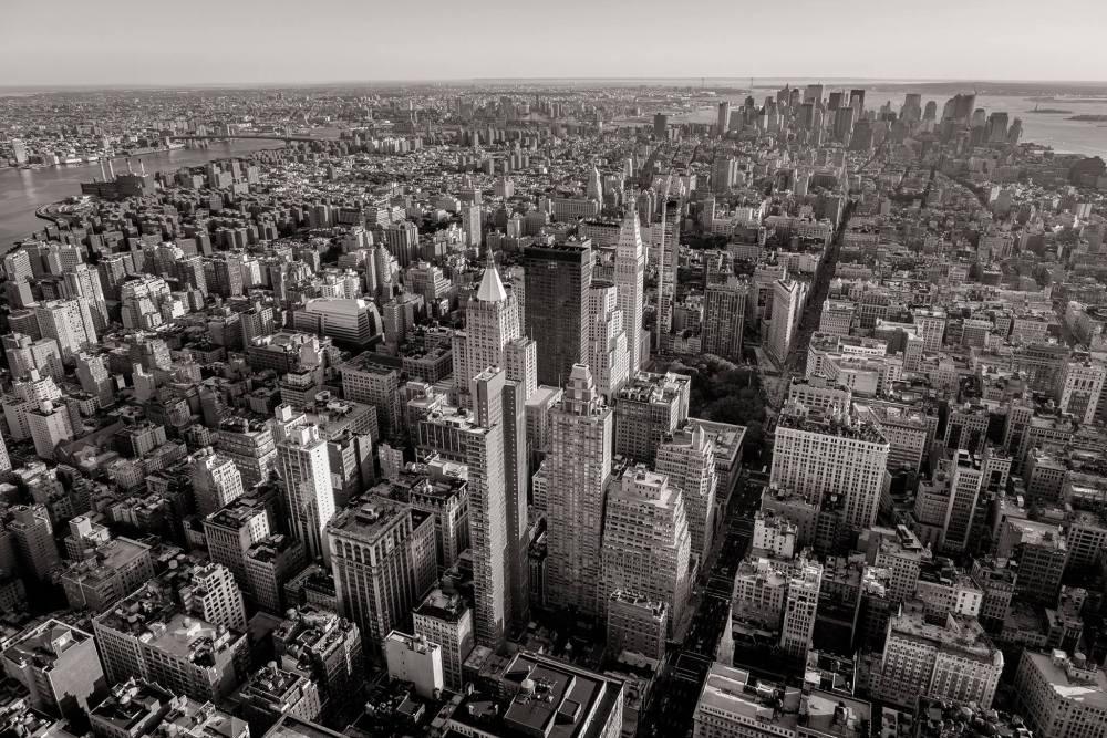 Lemonade Insurance in New York City, NY