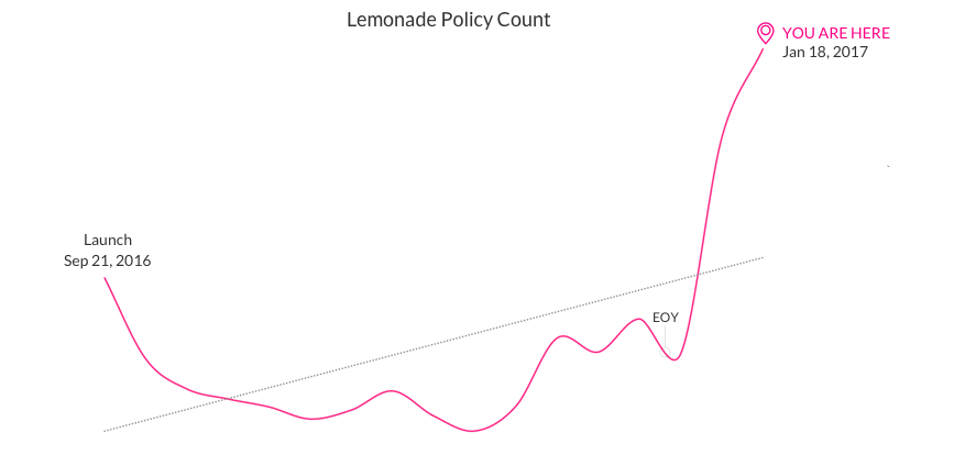 Lemonade Insurance Policy Count
