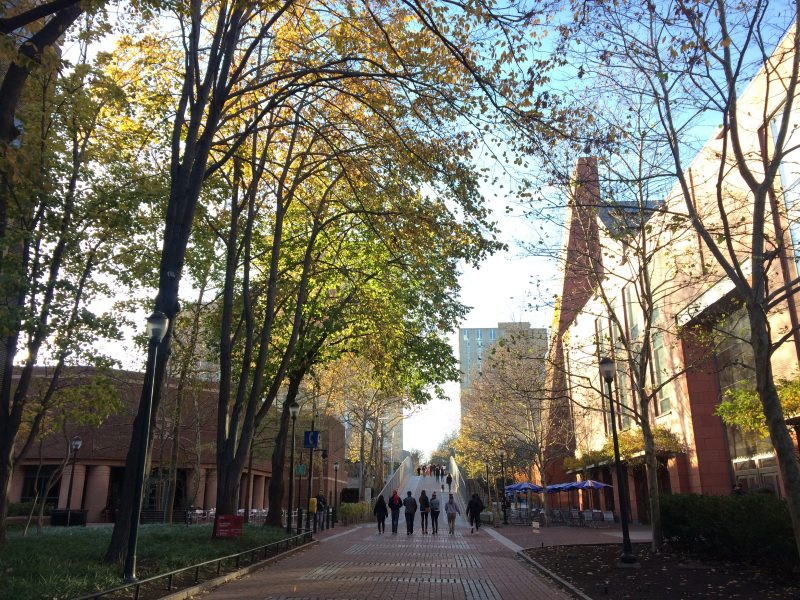 Locust Walk - Lemonade Philly Guide