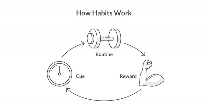 How Habits Work according to Charles Duhigg - Lemonade Blog