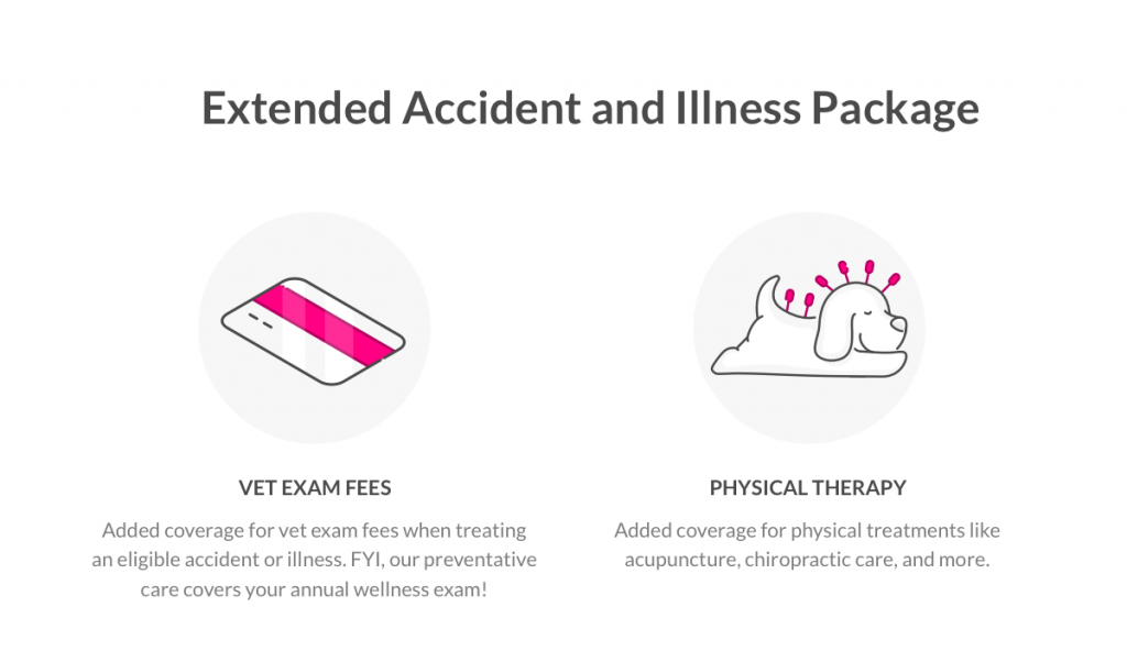 This is How Much Pet Health Insurance Actually Costs ...