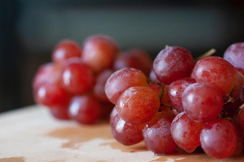 dog eats grapes