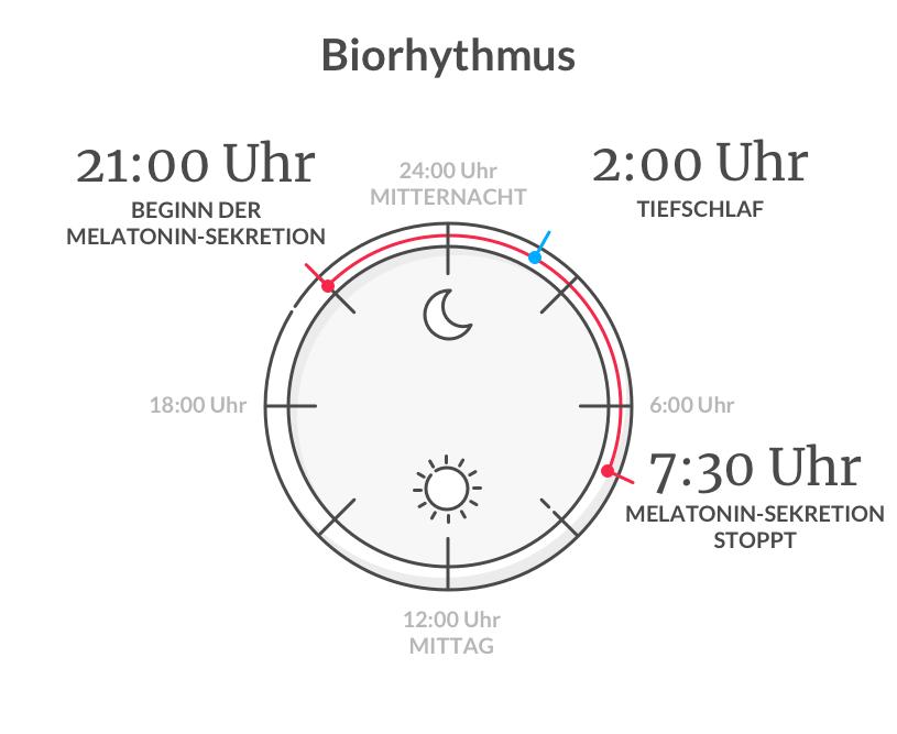 Biorhythmus