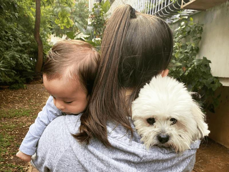 Kindersicherheit-mit-Haustier